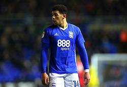 Che Adams of Birmingham City - Mandatory by-line: Robbie Stephenson/JMP - 06/02/2018 - FOOTBALL - St Andrew's Stadium - Birmingham, England - Birmingham City v Huddersfield Town - Emirates FA Cup fourth round proper