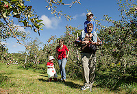 The Jordon-Cotes family enjoys a Sunday afternoon apple picking adventure at Smith Orchard in Belmont.  (Karen Bobotas/for the Laconia Daily Sun)