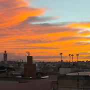 Marrakesh Selects