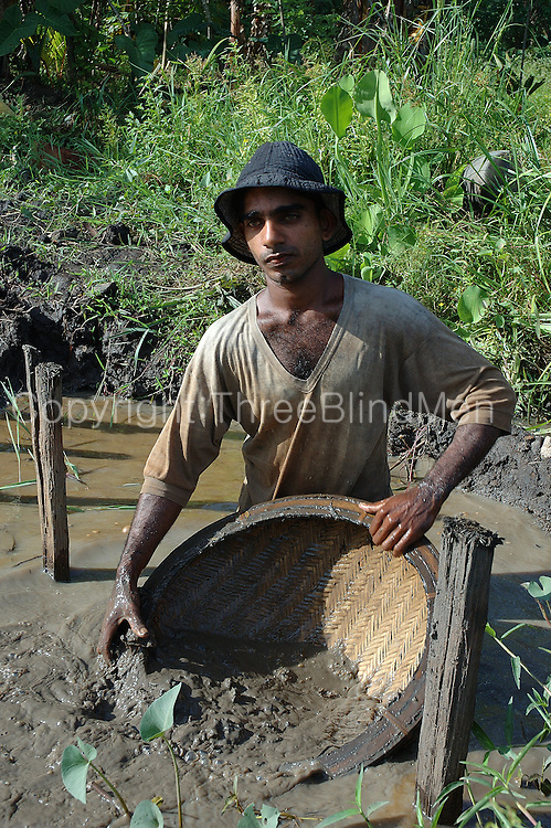Ratnapura is called the City of Gems. The centre of all gem mining in the country, the fields in the vicinity are spotted with mines, some large & deep, others small. These miners dig for stones at a small mine. The gravel is then washed in a basket hopefully leaving just precious stones behind.