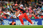 17th February 2019, Marvel Stadium, Melbourne, Australia; Australian Big Bash Cricket League Final, Melbourne Renegades versus Melbourne Stars; Cameron White of the Melbourne Renegades plays the ball through the off side