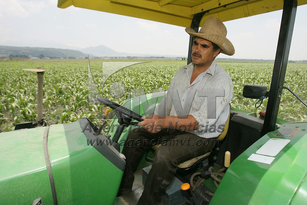 Tenango del Valle, Mex.- Un campesino abona con un tractor su parcela sembrada con maiz. Agencia MVT / Mario Vazquez de la Torre. (DIGITAL)<br /> <br /> <br /> <br /> <br /> <br /> <br /> <br /> NO ARCHIVAR - NO ARCHIVE