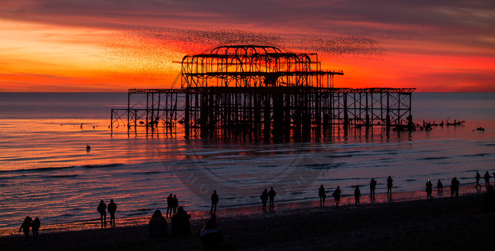 © Hugo Michiels Photography. 17/11/2017. Brighton, UK. A colourful sunset over the Brighton Wets Pier, today November 17th 2017. Photo credit: Hugo Michiels Photography