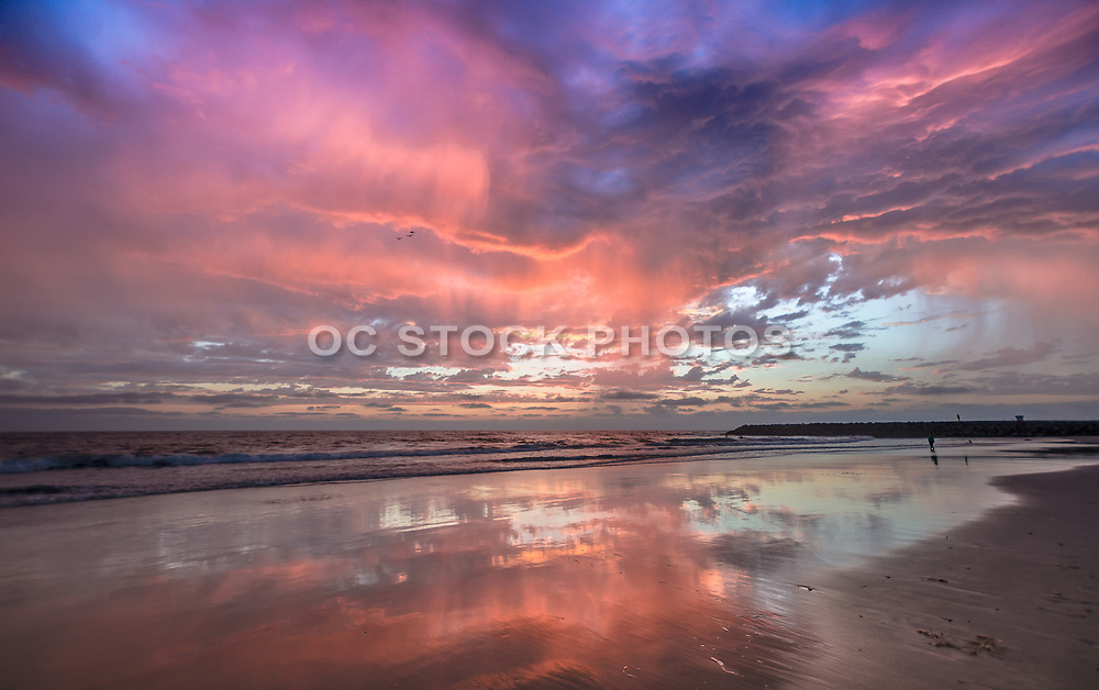 Tamarac Beach At Low Tide With A Pink Sky Sunset