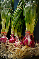 Onions for sale at the State Farmers' Market.