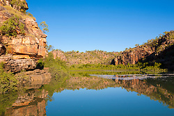 Reflections in the Sale River on the Kimberley coast.