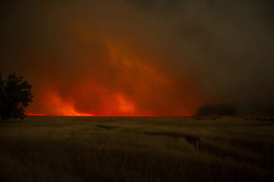 September 12, 2015 - Lake County, California. Valley Fire appraochs Hidden Valley, with strong winds and open pastures, the fire acclerate, blocks highway 29.  (Kim Ringeisen / Polaris)