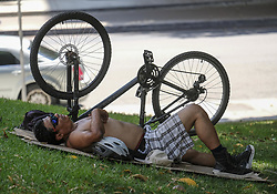August 29, 2017 - Los Angeles, California, U.S - A man rest under the shade on a lawn on Tuesday, Aug. 29, 2017, in Los Angeles. California energy authorities urged voluntary conservation of electricity Tuesday as a wave of triple-digit heat strained the state's power grid. Record-breaking heat will persist across Southern California today, with L.A. County temperatures up to 18 degrees above normal, and forecasters issued a heat advisory for the L.A. County coast. (Credit Image: © Ringo Chiu via ZUMA Wire)