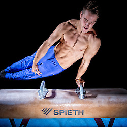 20131125: Gymnastics - Photoshoot of Slovenian gymnasts