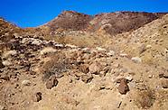 Boy Scout Canyon