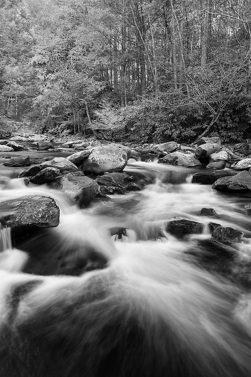 Large Cascades West Prong Little Pidgeon River - Great Smoky Mountains - Autumn - Black & White