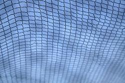 Netting to cover raspberries,