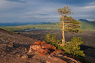View from the top of the Cinder Cone, Lassen Volcanic National Park, California