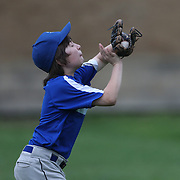 A young baseball player makes a catch in the outfield  during the Norwalk Little League baseball competition at Broad River Fields,  Norwalk, Connecticut. USA. Photo Tim Clayton