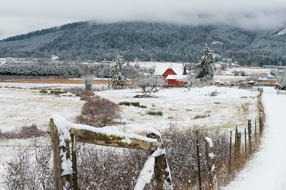 Snow in Happy Valley, Sequim WA, on the eve of the first day of winter.