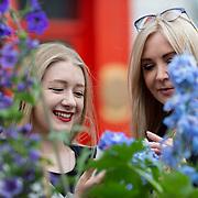 Limerick Garden Festival
