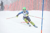 Macomber Cup slalom at Gunstock January 19, 2014.  ©2014 Karen Bobotas Photographer