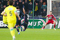 Goal Vincent BESSAT  - 20.01.2015 - Nantes / Lyon  - Coupe de France 2014/2015<br /> Photo : Vincent Michel / Icon Sport