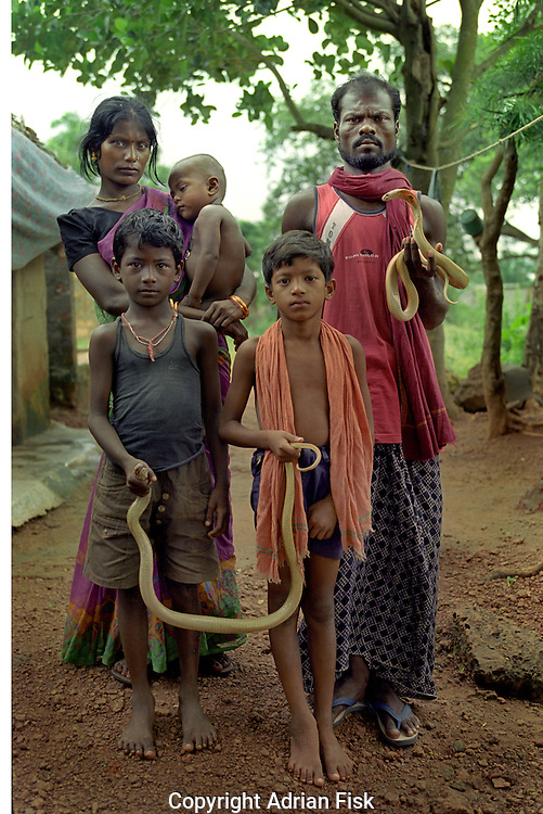 The village of Padmakesharpur in the state of Orissa in East India is probably the largest community of snake charmers anywhere in the world. 200 charmers live in the village, but each year they find it harder to make a living from charming and their numbers are slowly diminshing. .Sagah stands with his wife Joti and sons L to R, Tapas, Santosh and Akash. Sagah has occasional luck playing snake charmers in films, he has been in seven, but in general he says that his income is down by 75% and wonders why he is risking a lengthy prison sentence or large fine by continuing charming..