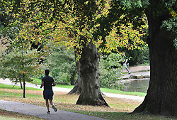 © Licensed to London News Pictures. 02/10/2018<br /> TUNBRIDGE WELLS, UK.<br /> A man jogging round the park.<br /> A bright autumnal weather afternoon at Dunorlan Park, Royal Tunbridge Wells, Kent.<br /> Photo credit: Grant Falvey/LNP