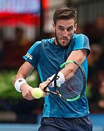 DAMIR DZUMHUR (BIH)<br /> <br /> Tennis - ERSTE BANK OPEN 2017 - ATP 500 -  Stadthalle - Wien -  - Oesterreich  - 26 October 2017. <br /> © Juergen Hasenkopf