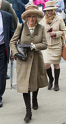Camilla Duchess of Cornwall arriving  at the Cheltenham Festival Ladies Day. Cheltenham Racecourse, Cheltenham, United Kingdom. Wednesday, 12th March 2014. Picture by i-Images