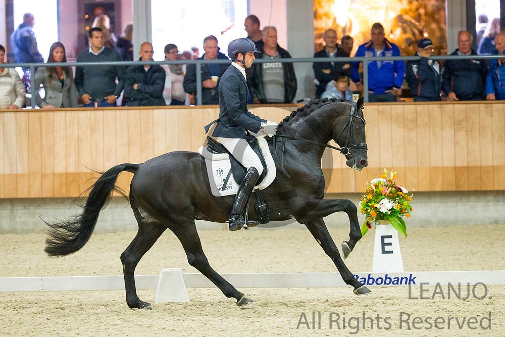 Benjamin Maljaars - Glamourdale<br /> KWPN Kampioenschappen 2016<br /> &copy; DigiShots