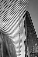 The One World Trade Center tower soaring 1776 feet above the wings of  Santiago Calatrava's transportation hub in Battery Park City.