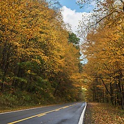 Fall foliage in West Virginia.