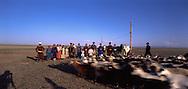 Mongolia. catle breeder family in Durgun Nuur Lake     / famille d eleveurs pres du lac DURGUN, aymag de QOVD; Mongolie )