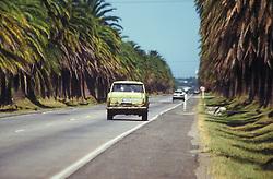 Uruguai,    fev/98.Estrada./ Road..Foto  © Adri Felden/Argosfoto