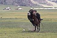 Mongolia. Rodeo. Yak festival in Tariat sum area  arkangai  Mongolia  /Rodeo . nadaam (fette) des yaks dans region de Tariat sum  arkangai  Mongolie