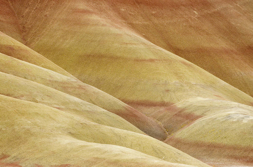 Colrful layers and striations , Painted Hill Unit of John Day Fossil Beds National Monument Oregon