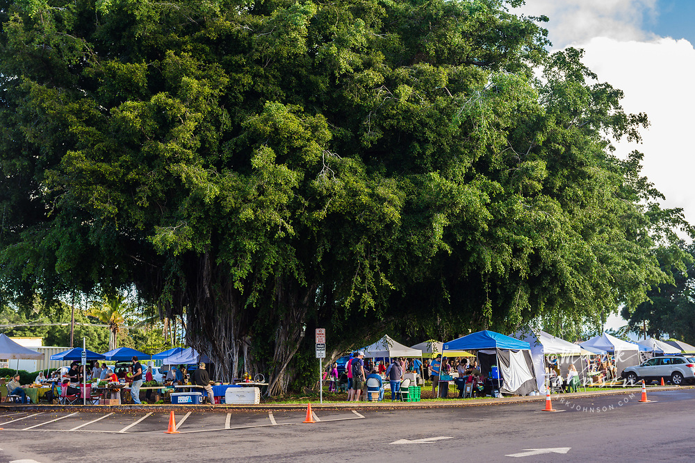 Farmer's Market, Hawi, Big Island, Hawaii