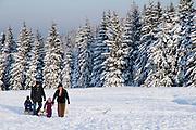 Menschen im Schnee, verschneiter Winterwald, Schnee, Winter, Torfhaus, Harz, Niedersachsen, Deutschland | people in snow, winter, Torfhaus, Harz, Lower Saxony, Germany