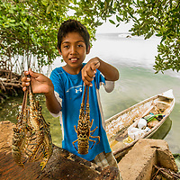 Small scale of lobster fishery in Caye Caulker, Belize.