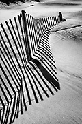 High contrast black-and-white image of sand fence and shadow on a Outer Banks beach.