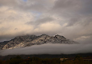 Winter storms brought rain and snow to the Santa Catalina Mountains, Mount Lemmmon, Coronado National Forest, Sonoran Desert, Tucson, Arizona, USA.