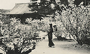 Kurokawa Suizan<br /> Temple gardens<br /> <br /> From a special boxed photo collection that includes 55 Vintage silver gelatin prints housed in an inscribed and credited kiri wood box.<br /> <br /> Collection price: Please inquire<br /> <br /> <br /> <br /> <br /> <br /> <br /> <br /> <br /> <br /> <br /> <br /> <br /> <br /> <br /> <br /> <br /> <br /> <br /> <br /> <br /> <br /> <br /> <br /> <br /> <br /> <br /> <br /> <br /> <br /> <br /> <br /> <br /> <br /> <br /> <br /> <br /> <br /> <br /> <br /> <br /> <br /> <br /> <br /> <br /> <br /> <br /> <br /> <br /> <br /> <br /> <br /> <br /> <br /> <br /> <br /> <br /> <br /> <br /> <br /> <br /> <br /> <br /> <br /> <br /> <br /> <br /> <br /> .