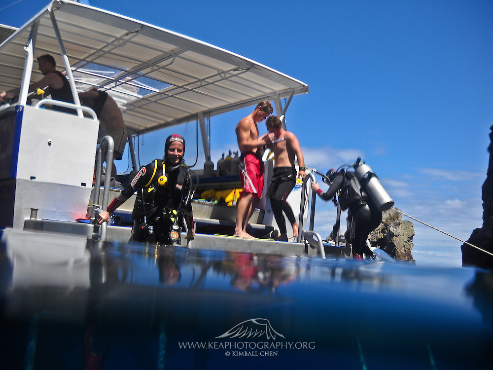 Scuba divers on boat, Poor Knights Marine Reserve, New Zealand