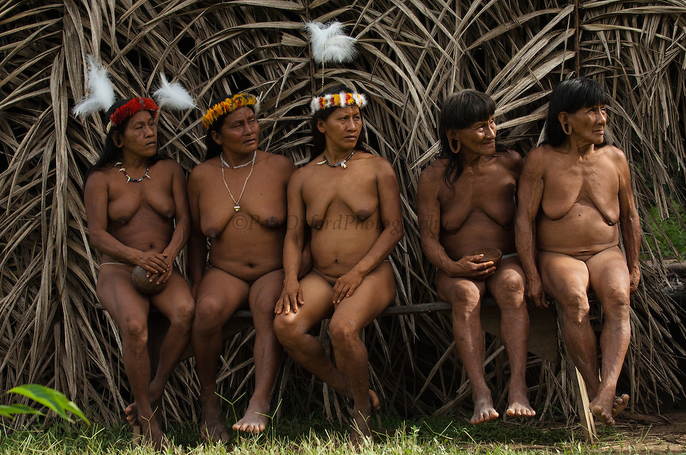 Huaorani women, Awame Gomoke &amp; Dete Iteka, Ewa Kemperi, Me&ntilde;emo Bopaga &amp; Bebanca Wane. The crowns are topped with a Harpy Eagle feather<br /> Bameno Community. Yasuni National Park.<br /> Amazon rainforest, ECUADOR.  South America<br /> This Indian tribe were basically uncontacted until 1956 when missionaries from the Summer Institute of Linguistics made contact with them. However there are still some groups from the tribe that remain uncontacted.  They are known as the Tagaeri &amp; Taromenane. Traditionally these Indians were very hostile and killed many people who tried to enter into their territory. Their territory is in the Yasuni National Park which is now also being exploited for oil.