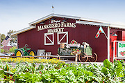 The Original Manassero Farms Market Irvine