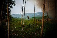 Lone silhouette of a man standing in a forest, Yen Bai Province, Vietnam, Southeast Asia