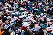 January 17, 2016: Carolina Panthers vs Seattle Seahawks. Panthers fans cheer in the stands