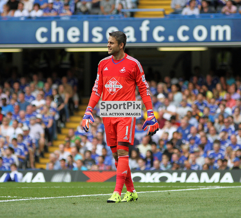 Lukasz Fabianski During Chelsea vs Swansea on the 8th August 2015.