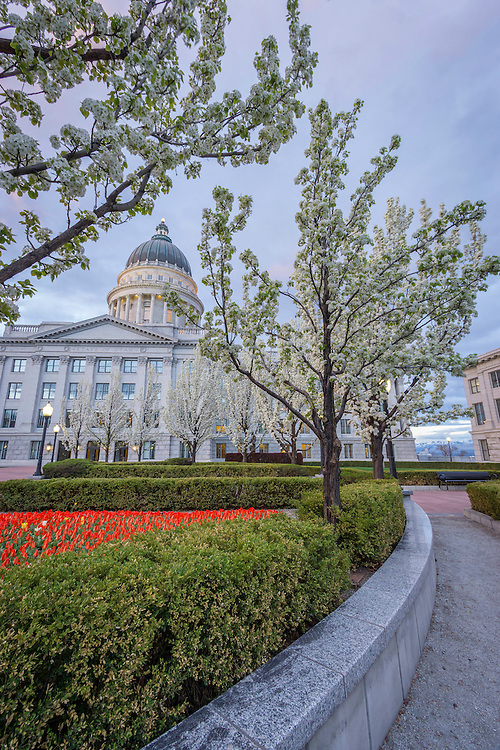 Pathways lead around the inner gardens of the Utah State Capitol building as the flowers and trees bloom during Spring.