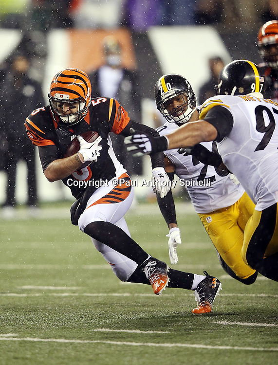 Cincinnati Bengals quarterback AJ McCarron (5) runs away from Pittsburgh Steelers strong safety Will Allen (20) and Pittsburgh Steelers defensive end Cameron Heyward (97) during the NFL AFC Wild Card playoff football game against the Pittsburgh Steelers on Saturday, Jan. 9, 2016 in Cincinnati. The Steelers won the game 18-16. (©Paul Anthony Spinelli)