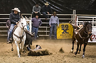 Steer wrestler Austin Anderson makes his run during slack at the Bismarck Rodeo on Saturday, Feb. 3, 2018. This photo and more from most runs are available at Bobwire-S.com.