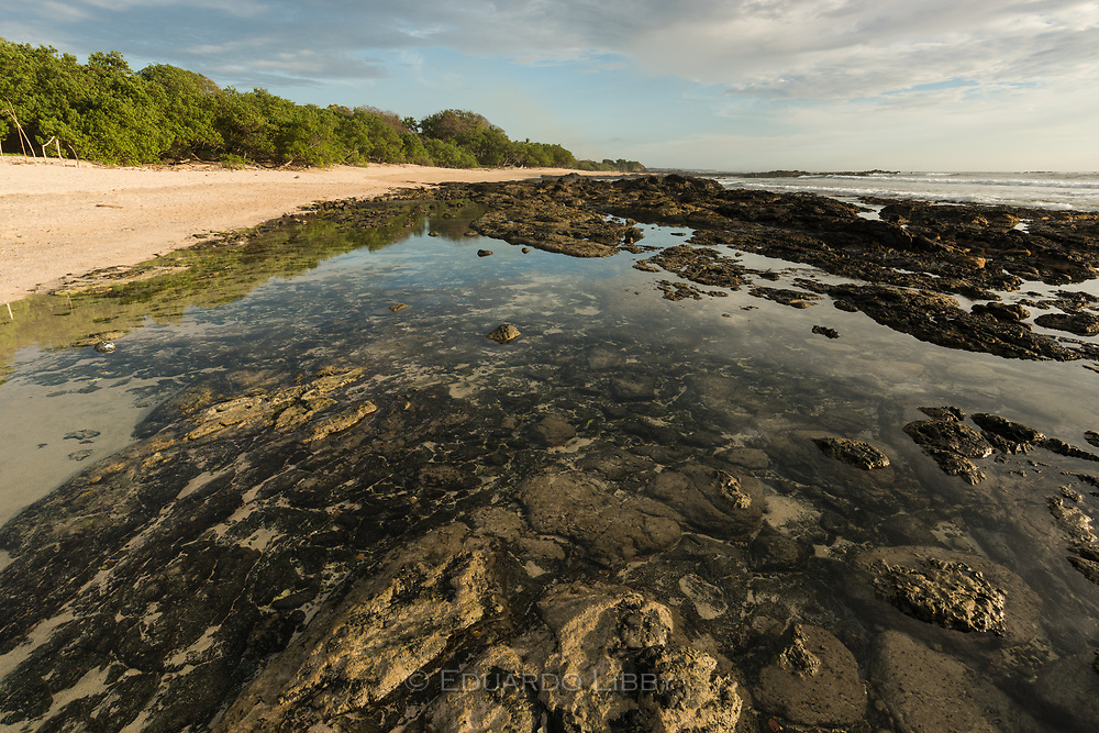 A tidal pool near Avellana Beach, Guanacaste, Costa Rica.