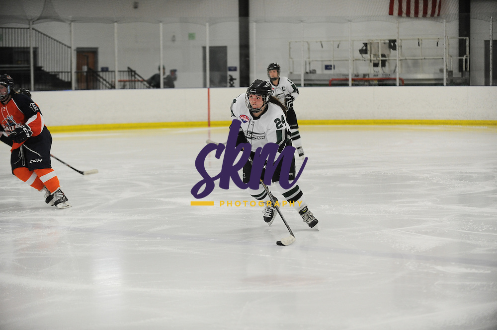 Stevenson's women's ice hockey team continues their home winning streak as they take a 6-1 victory over the Salem Vikings on Friday afternoon at the Reisterstown Sportsplex.